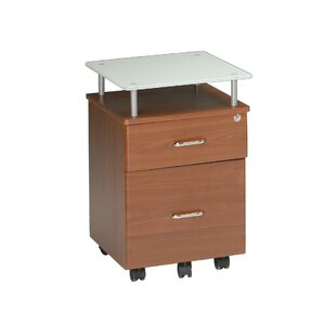 Vision 2-Drawer Mobile Vertical Filing Cabinet