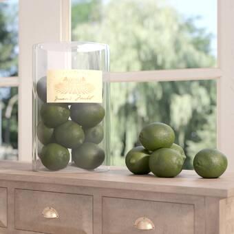 Allmodern 24 Piece Haverhill Pebbles Vase Filler Set Reviews Wayfair