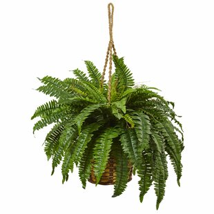 artificial boston fern | wayfair