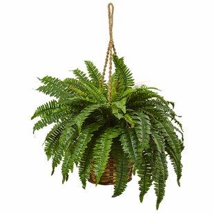 artificial boston fern | wayfair