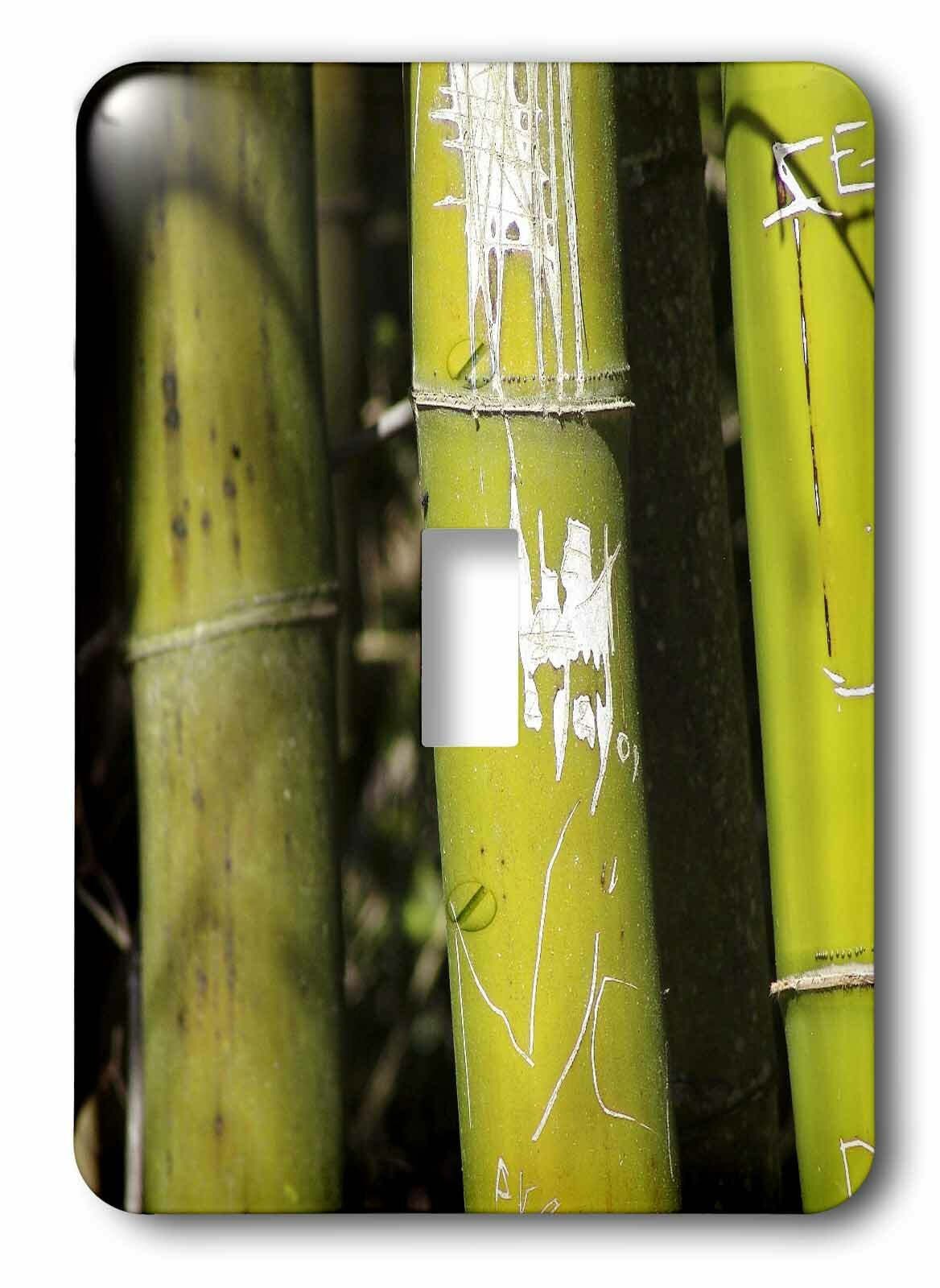 3drose Bamboo Art 1 Gang Toggle Light Switch Wall Plate Wayfair