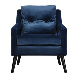 Casanovia Velvet Armchair by Willa Arlo Interiors