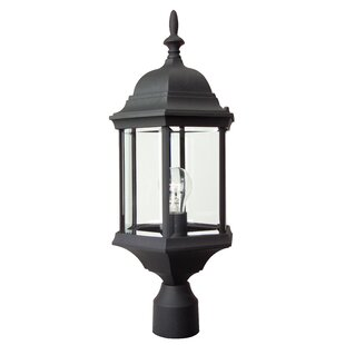 Charlton Home Oakhill 1-Light Matte Black Lantern Head