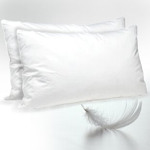Ianthe Medium Down and Feathers Standard Pillow (Set of 2) ByAlwyn Home
