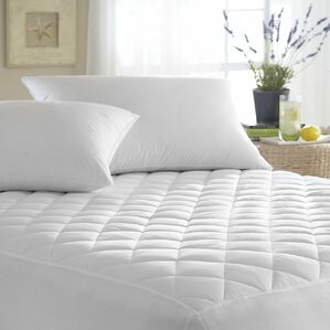 Quilted Bed Bug Hypoallergenic Waterproof Mattress Protector by Alwyn Home