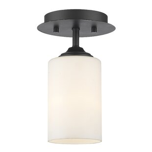 Beegle 1-Light Semi Flush Moun..