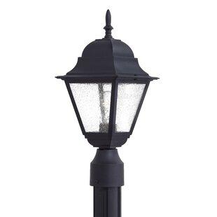 Rosalina Outdoor 1-Light Lantern Head By Charlton Home