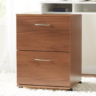 Campus 2-Drawer Mobile Vertical Filing Cabinet by Ebern Designs