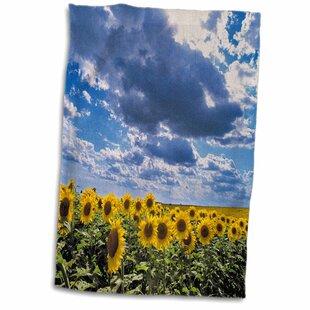Sunflower Kitchen Towels You Ll Love In 2021 Wayfair