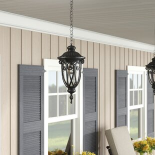 Astoria Grand Appalachian 1-Light Outdoor Pendant