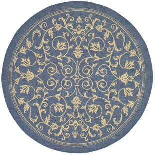 Octavius Blue Indoor/Outdoor Area Rug by Charlton Home