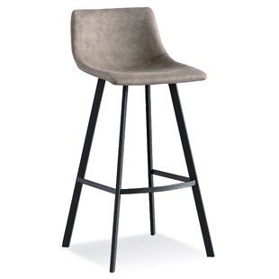 Windermere 25'' Bar Stool (Set of 2) by Wrought Studio