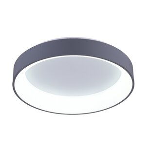 CWI Lighting Arenal 1-Light LED Flush Mount