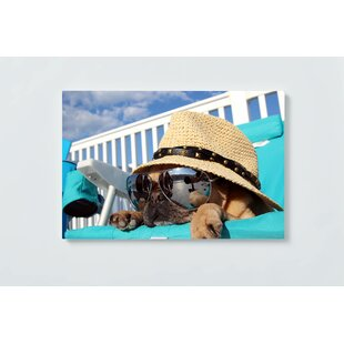 Dog Motif Magnetic Wall Mounted Cork Board By Ebern Designs