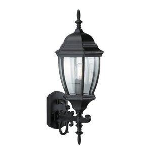 Lotta Outdoor Wall Lantern Image