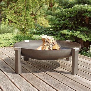 Sotomayor Stainless Steel Charcoal/Wood Burning Fire Pit Image