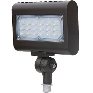 2-Light LED Flood Light