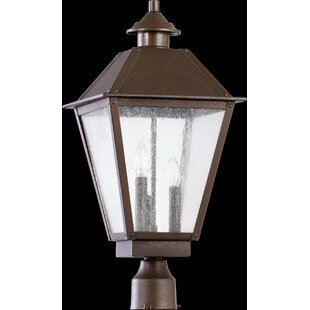 Alcott Hill Mei Outdoor 3-Light Lantern Head