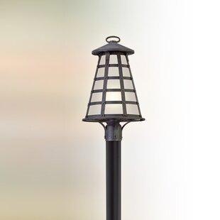 17 Stories Neelesh Outdoor 1-Light LED Lantern Head