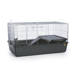 Universal Small Animal Cage W Wire Spacing