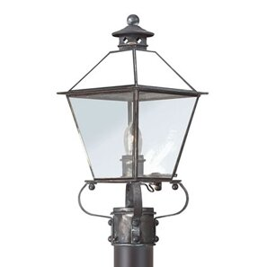Theodore 1-Light Lantern Head by Darby Home Co