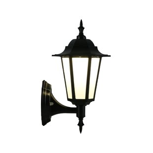 Comparison Pinto LED 1 Outdoor Wall Lantern By Astoria Grand