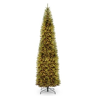 kingswood pencil 12 green fir artificial christmas tree with 800 clear lights with stand