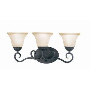 Williford 3-Light Vanity Light by Fleur De Lis Living