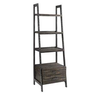 Ladder Bookcase Scott Living