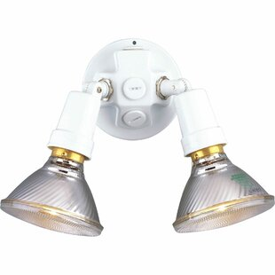 Progress Lighting Swivel 150 Watt Outdoor Security Flood Light (pack of 2)