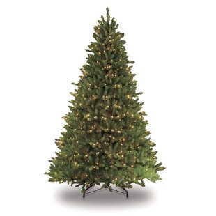 Pre Lit Frazer Fir Artificial Christmas Tree With 750 Clear Ul Listed Lights