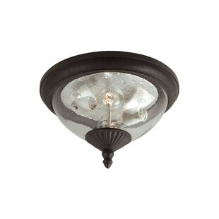 Alcott Hill Dowling 2-Light Outdoor Flush Mount