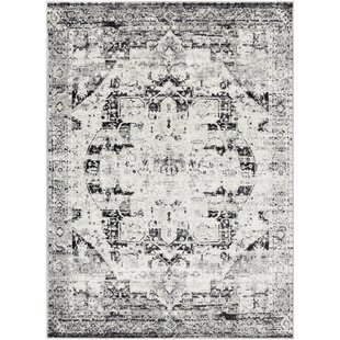 Ana Distressed Traditional Ivory/Black Area Rug By World Menagerie