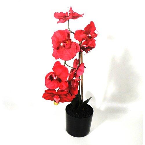 Kunstblume Phalaenopsis Orchidee im Topf Die Saisontruhe   Dekoration > Dekopflanzen > Kunstpflanzen   Die Saisontruhe