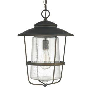 Outdoor hanging lights joss main remington 1 light outdoor hanging lantern aloadofball Images