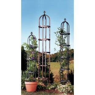 Plow & Hearth Steel Obelisk Trellis