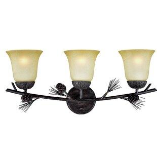 Millwood Pines Stricklin 3-Light Vanity Light