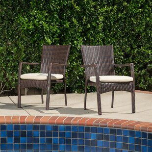 Brandon Arm Chair (Set of 2) Beachcrest Home