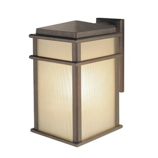 Top Olympia 1-Light Outdoor Wall Lantern By Brayden Studio
