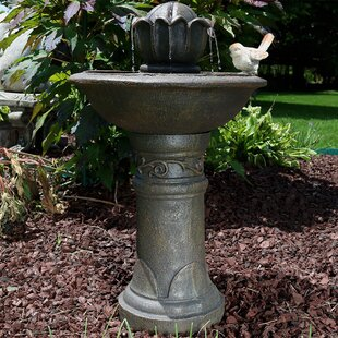 Alcott Hill Mira Fiberglass Blooming Birdbath Water Fountain
