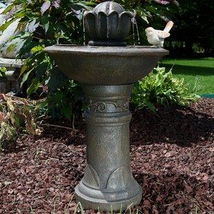 Alcott Hill Mira Fiberglass Blooming Birdbath Water Fountain