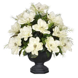 Artificial Magnolia with Asparagus Fern