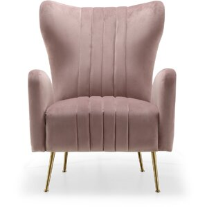 Pamila Velvet Wingback Chair by Everly Quinn