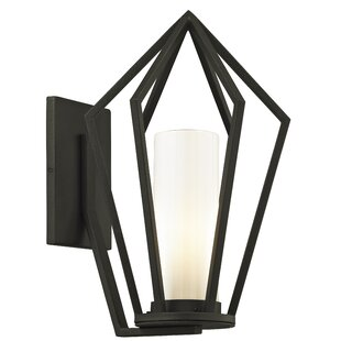Teitelbaum Outdoor Sconce by Millwood Pines