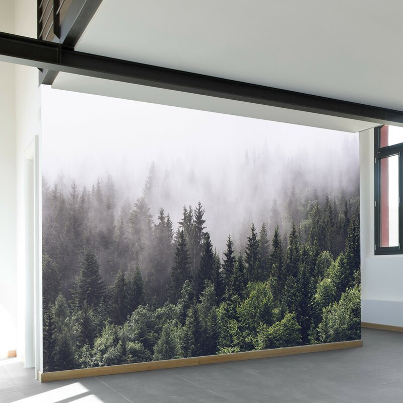 "Forest Wall Mural walls need love misty forest 11.6' x 96"" wall mural & reviews"