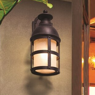 Compare Marli 1-Light Outdoor Wall Lantern By 17 Stories