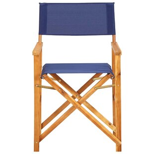 Liang Folding Director Chair (Set Of 2) By Sol 72 Outdoor