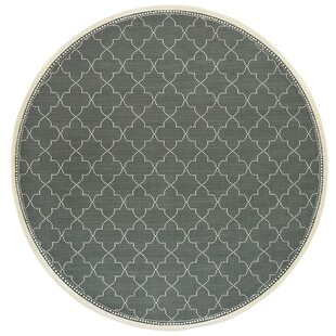 Mckelvey Casual Gray Indoor/Outdoor Area Rug