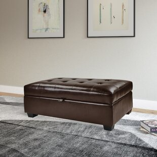 Order Dumbarton Storage Ottoman ByDarby Home Co