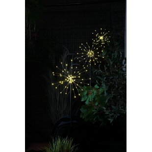 Bluff Trail Firework 3 Light LED Decorative And Accent Lights (Set Of 3) Image